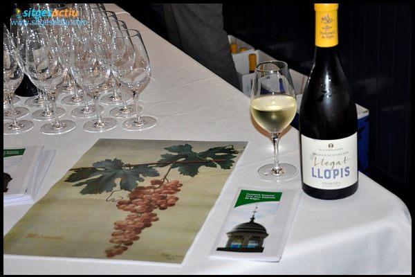 Presentació dels nous vins de l Hospital