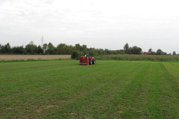 Lavori campo 2012, il ritorno