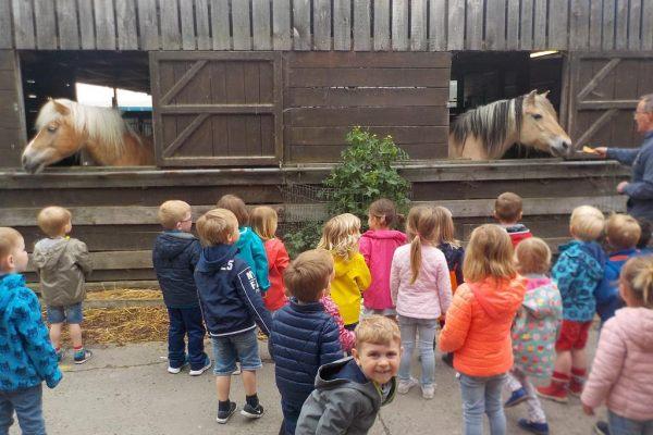 K1a Schoolreis kinderboerderij