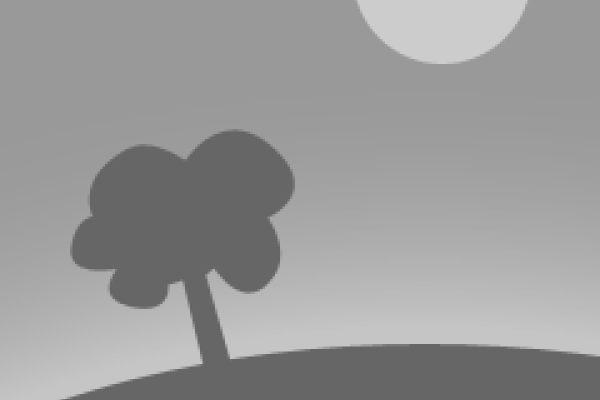 Decoupage en Vidrio