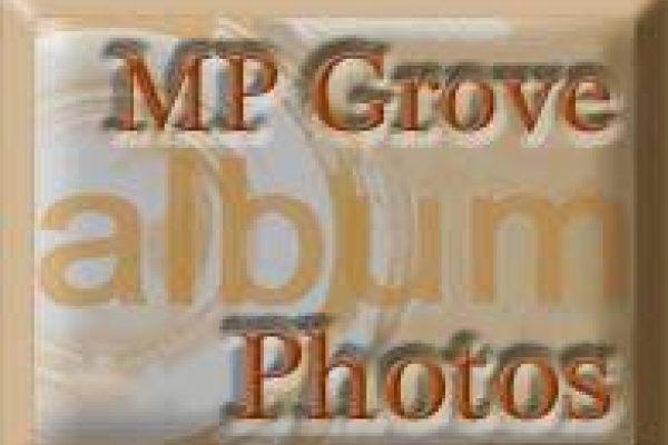 MP Grove Photos