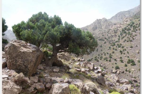 Jebel Toubkal Maroc 2012