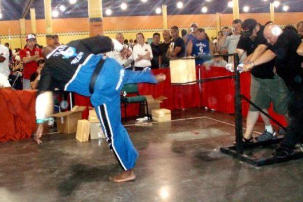 2007 WBA World Championships