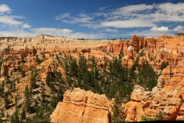 Bryce Canyon, 5eme Edition