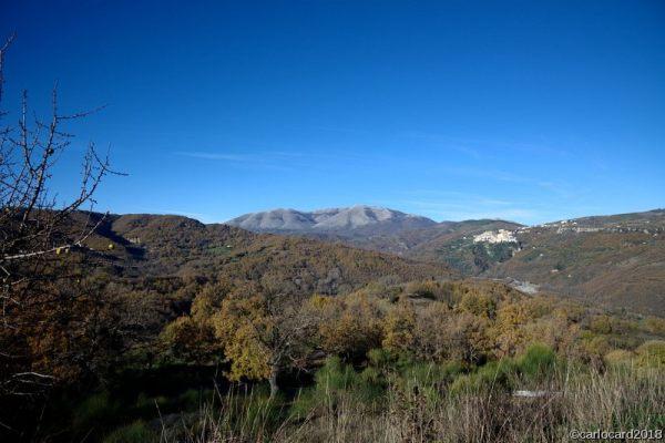 Calvera-Carbone