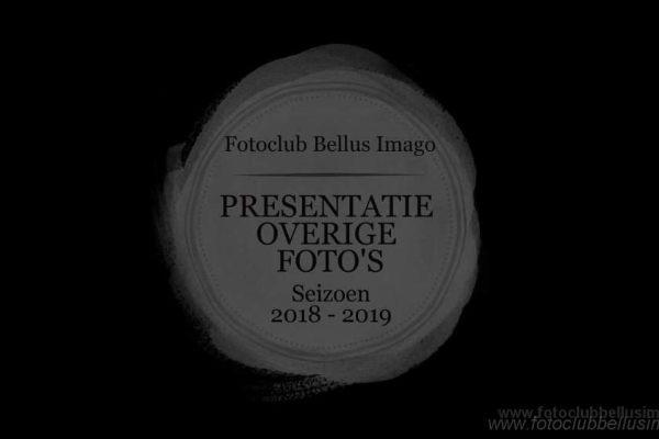 Foto exposition Fotoclub Bellus Imago